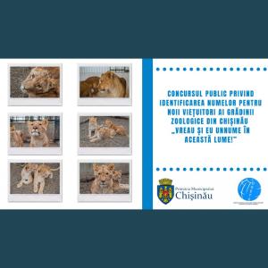 """Concursul public privind identificarea numelor pentru noii viețuitori ai Grădinii Zoologice din Chișinău """"Vreau și eu un nume în această lume!"""""""